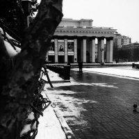 Красота весны городской :: Света Кондрашова