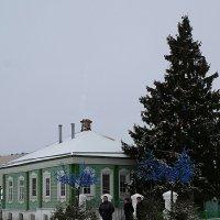 Нарядили ёлку возле дома :: san05   Александр Савицкий