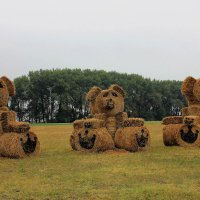 """Современный """" , Шишкин"""" картина  """" Три медведя """"на  современный лад... :: Клара"""