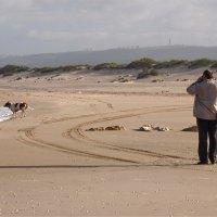 прогулка по пляжу Боним :: Ирина ***