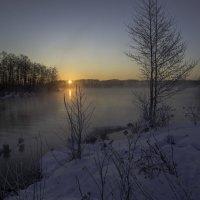 Утро на озере :: Александра
