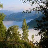 Дремлет в долине туман :: Сергей Чиняев