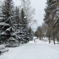 Городской пейзаж :: Лидия Суюрова