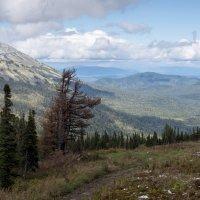 Вид с горы Зеленая :: Валерий Михмель