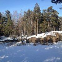 зима :: натальябонд бондаренко