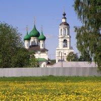 Толгский монастырь :: Vlad Сергиевич