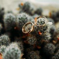 Свадебная фотосессия Смоленск :: Мария Зубова