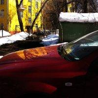 Красный, желтый, зеленый и другие :: Tanja Gerster