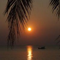 Солнце Вьетнама :: Рашид