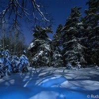 """В сказочном зимненм лесу (из фотоальбома """"Тамбовщина прекрасная"""") :: Сергей"""