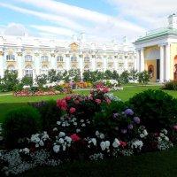 Висячий сад.Екатерининский дворец :: Надежда
