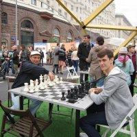 Сегодня я сыграю белыми... :: Дмитрий Никитин
