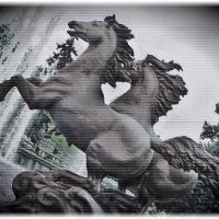 Кони-звери :: Nikolay Monahov