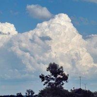 Горы из облаков :: Светлана Рябова-Шатунова