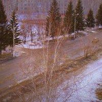 Весна на улице . :: Мила Бовкун