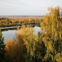 На окских берегах :: Вячеслав Маслов