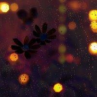 Ночной дождь. :: Наталья Соколова