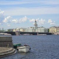 на берегах Невы :: Дмитрий Солоненко