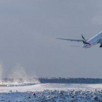 Emirates :: KotoPalych Gf