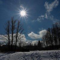 Весеннее солнце :: Владимир Д