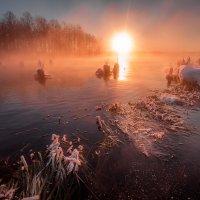 Шатурское озеро :: Fuseboy