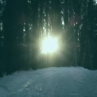 Последние лучики в темном лесу :: Raduzka (Надежда Веркина)
