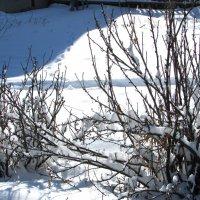 Последний день марта порадовал погодой))) :: Светлана