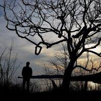 Последние отблески заката :: Елена Буслаева