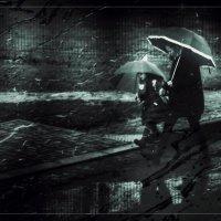 Опять дожди. :: Вера Катан