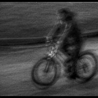 Велосипедист. :: Вера Катан