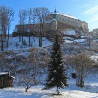 Замок Штернберк зимой. :: ИРЭН@ Комарова