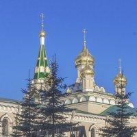 Воскресенский Новодевичий монастырь. Вербное Воскресенье. :: bajguz igor