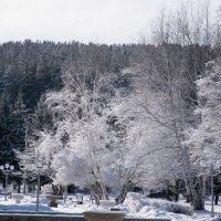 прощание зимы... :: Alexandr Staroverov