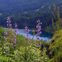 Горное озеро :: Vlad Сергиевич