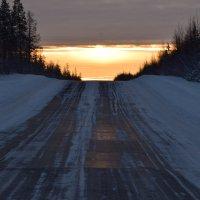Путь к солнцу :: Виталий Россия