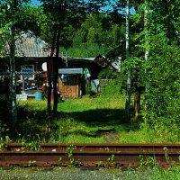 домик на станции :: Александр