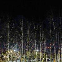 Ночной дворик. :: Михаил Николаев
