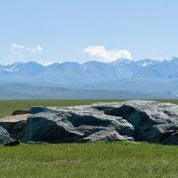 Недалеко от Монголии :: Валерий Михмель