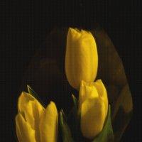 Желтые тюльпаны на 8 марта :: Алена Малыгина