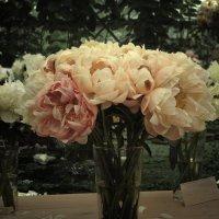 Картинки с выставки. Букет пионов. Pictures from the exhibition. Bouquet of peonies :: Юрий Воронов