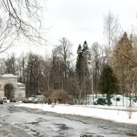 Берёзовые ворота гатчинского парка :: El Кондукова