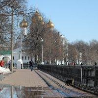 Апрельская лужа ярославской набережной, вчера в Ярославле :: Николай Белавин