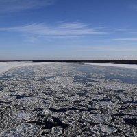 Ледяные пазлы :: Виталий Россия