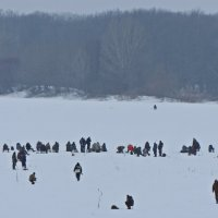 Рыбаки на Оке :: Ирина Козлова