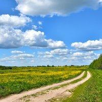 Ждём весну :: Oleg S