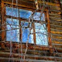 весенние окна :: Наталья Сазонова