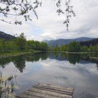 Красоты Карпат :: Роман Савоцкий