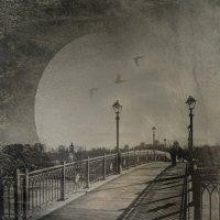 Мост в Царицыно :: Natalia