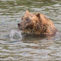 Кажется я поймал рыбку. :: Валерий Давыдов