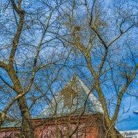 Весна в Москве. Ленинградский проспект. :: Игорь Герман